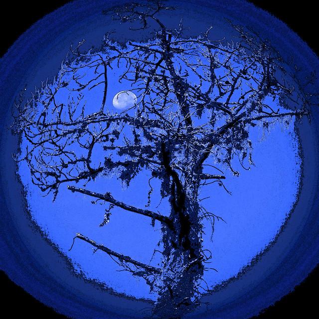 moon-set... Halloween style