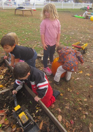 burying the pumpkin seeds and pulp