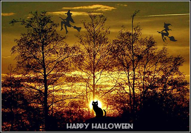 Halloween Composition ..