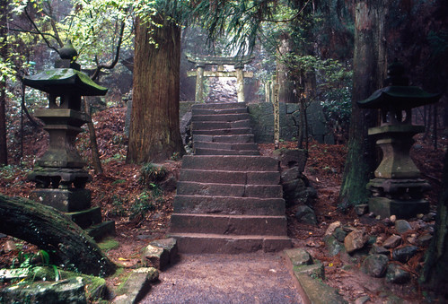 japan kyushu locations monumentssculpture occasions oita placesofworship plants shintoshrines subjects trees trips vacations