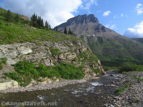 Looking downstream from the bridge in the Amphitheater on the Swiftcurrent Pass Trail, Glacier National Park, Montana