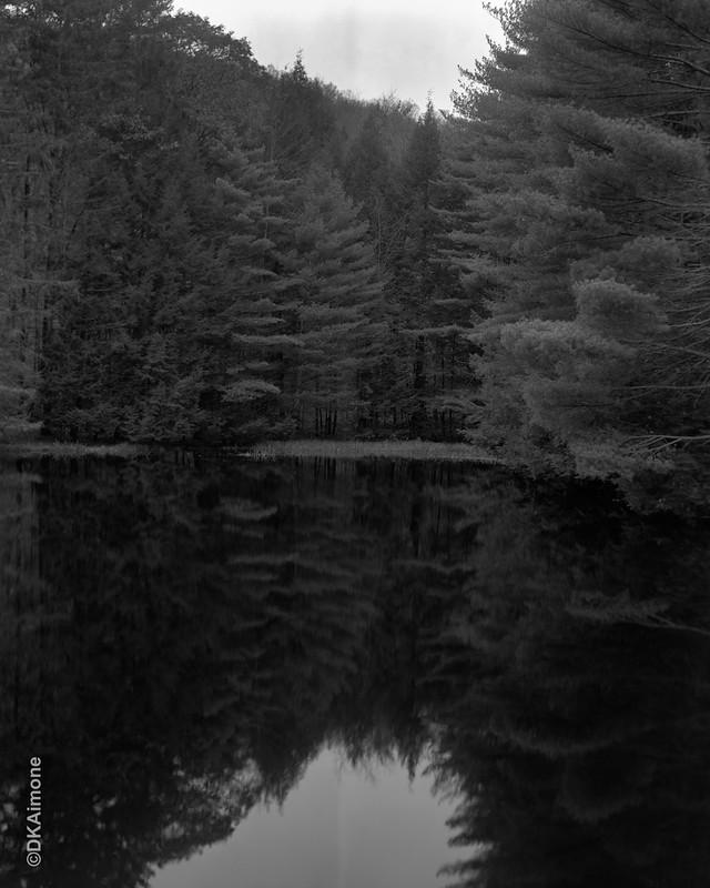 Dusk, Adirondack Pond