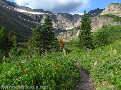 Meadows above Red Rock Falls on the Swiftcurrent Pass Trail, Glacier National Park, Montana