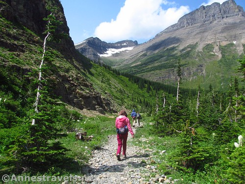Heading back down the trail just below the bridge on the Swiftcurrent Pass Trail, Glacier National Park, Montana