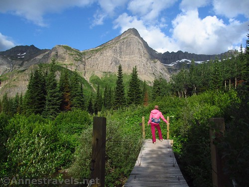 The swinging bridge on the Swiftcurrent Pass Trail, Glacier National Park, Montana