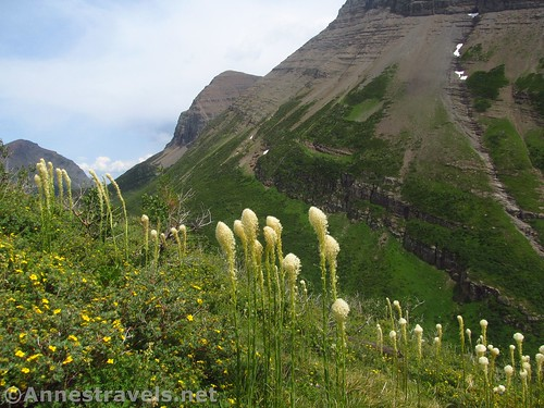 Hiking higher up in the Amphitheater on the Swiftcurrent Pass Trail, Glacier National Park, Montana