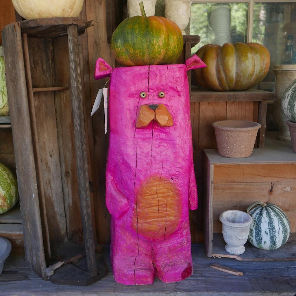 Pumpkin on a pink bear