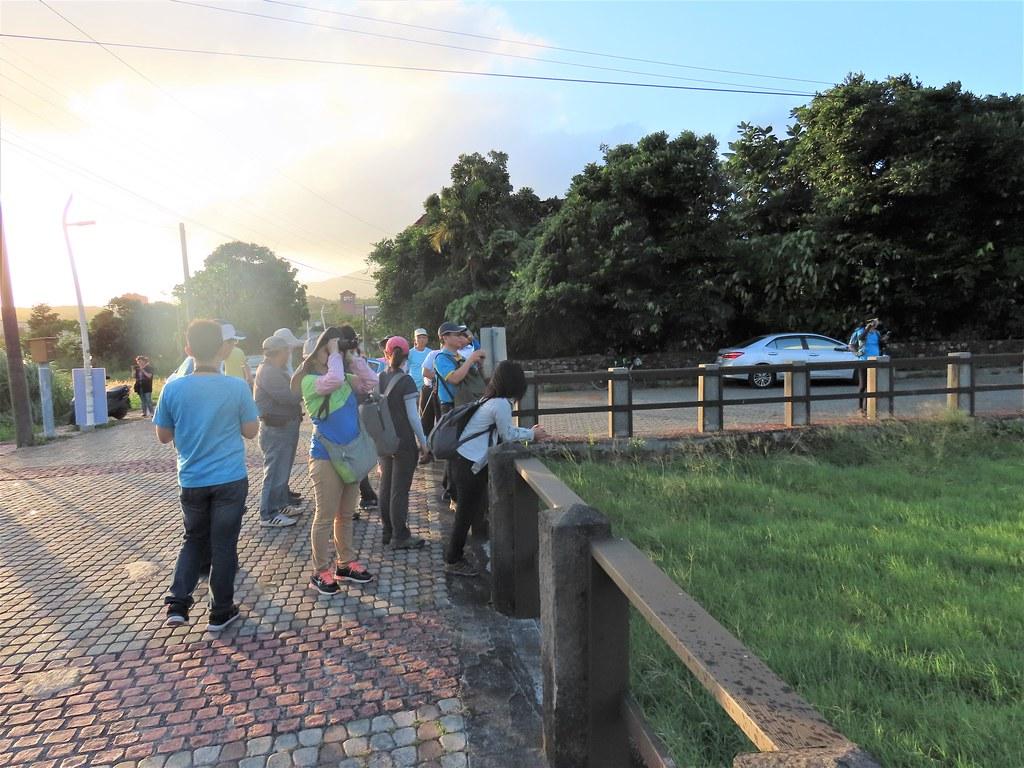 屏東縣滿洲鄉里德橋是著名的賞鷹點,10月常聚集大批的賞鳥遊客,這也帶動社區生態旅遊的契機。攝影:廖靜蕙