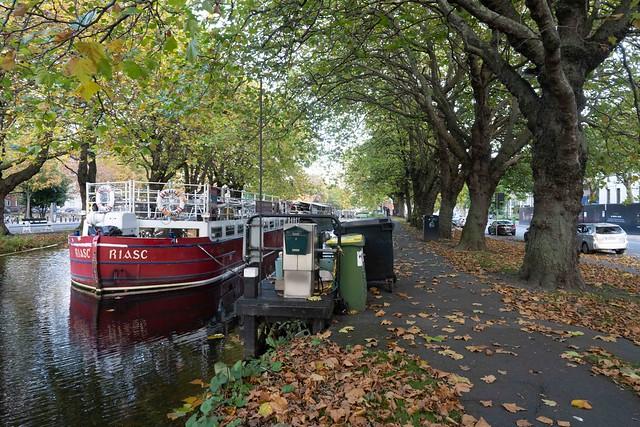 A WALK ALONG THE GRAND CANAL OCTOBER 2019 [BETWEEN BAGGOT STREET AND LEESON STREET]-157861