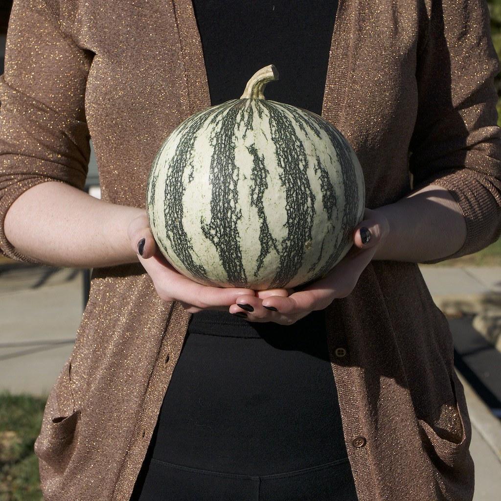 Cute pumpkin in hand