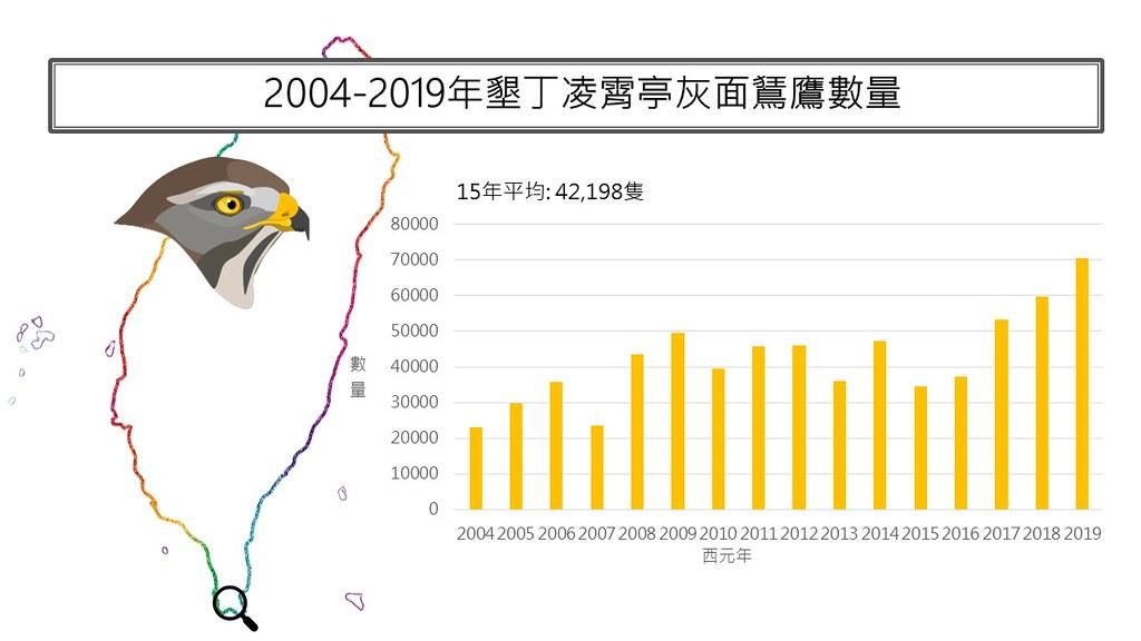國慶鳥灰面鵟鷹監測十年族群數量。圖片來源:台灣猛禽研究會提供