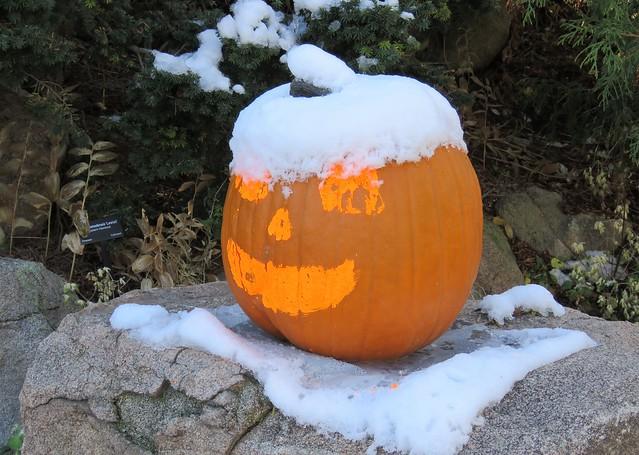 Colorado Halloween