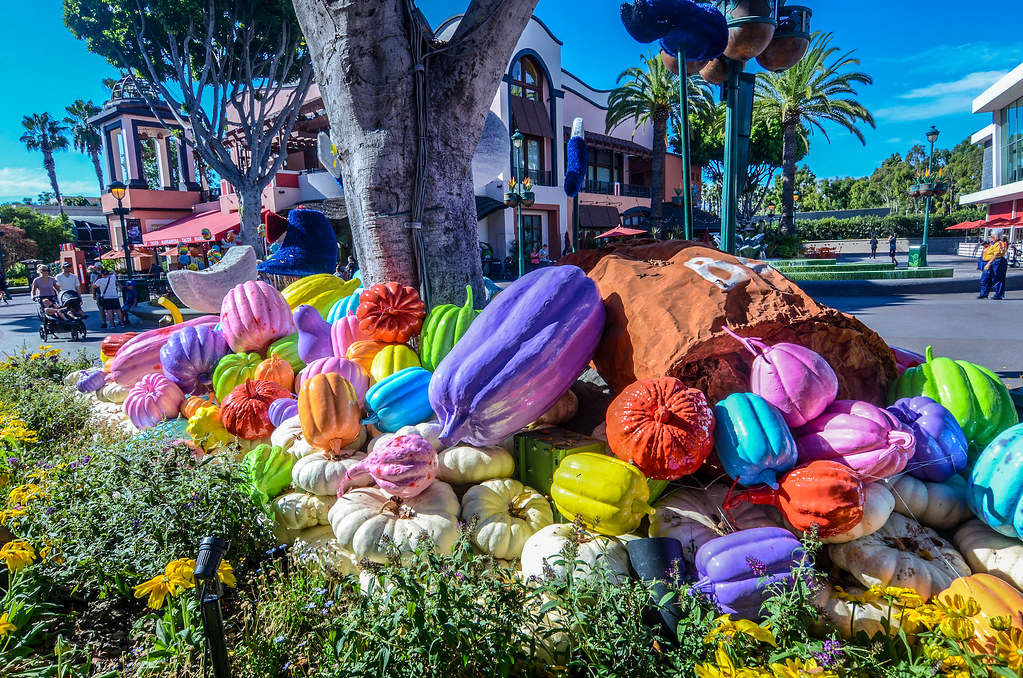 Colorful pumpkins Downtown Disney