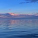 Pastel Pink Sunset Reflected on Tampa Bay