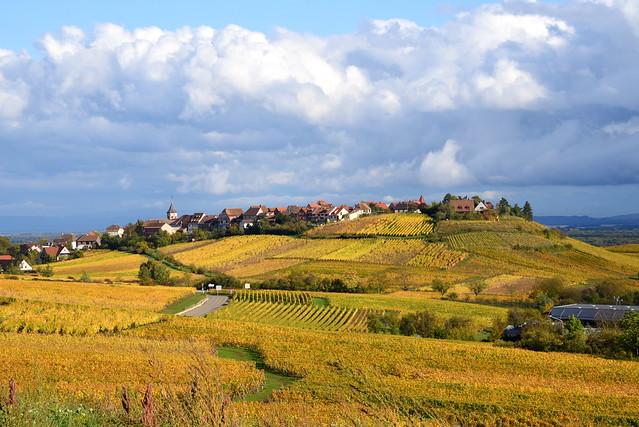 Zellenberg (Alsace, F)