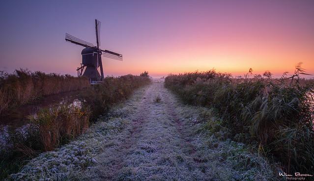 Early Mornings in the Alblasserwaard