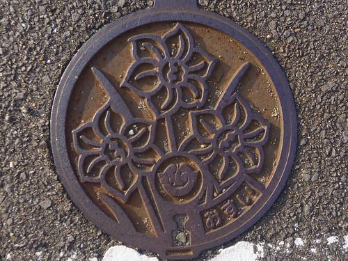 Takashima Nagasaki, manhole cover 3 (長崎県鷹島町のマンホール3)