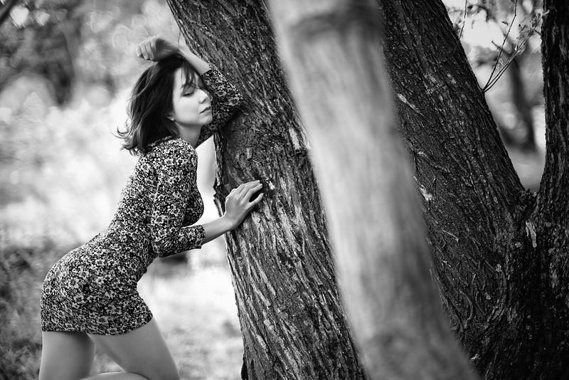 Primitive Forest
