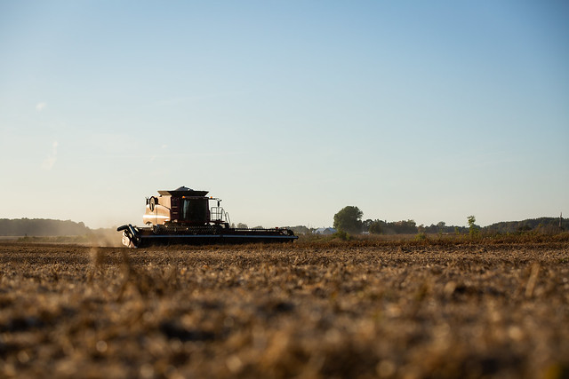 Milligan Farms harvesting soy beans in Michigan.