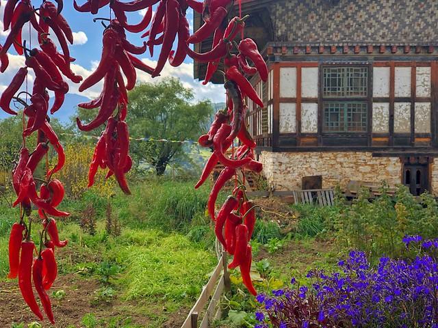 Casa típica del valle de Tang en Bumthang (Bután)