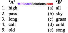 MP Board Class 10th General English The Spring Blossom Solutions Chapter 11 Wind 1