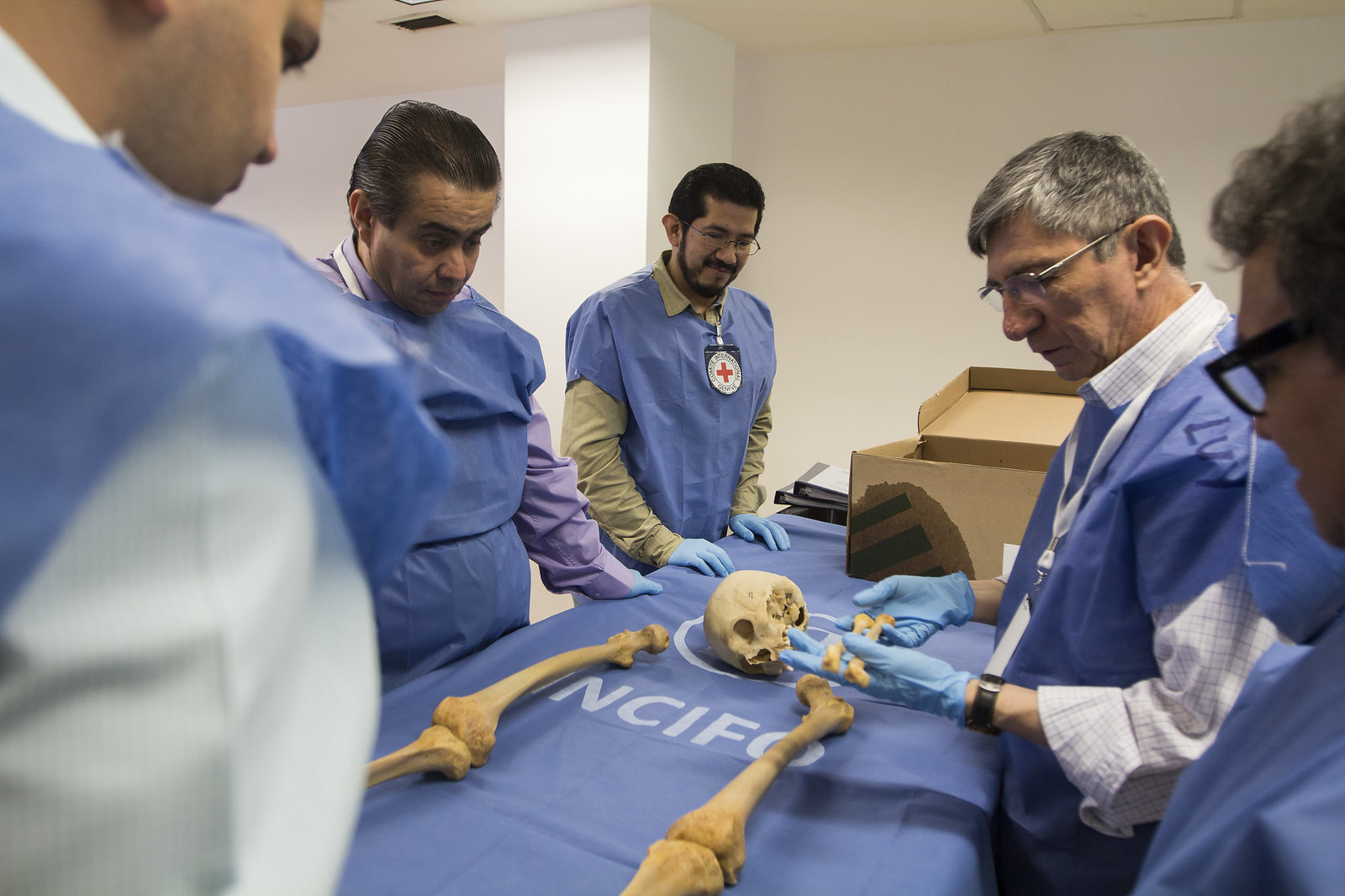 Forensic anthropologists working with the ICRC to examine a human skeleton laid out on a lab table