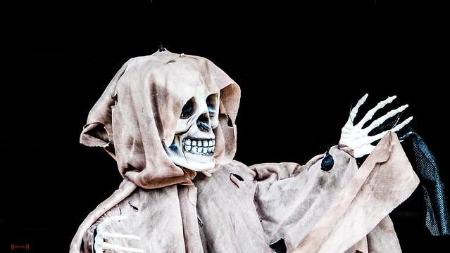 #Halloween - 7634