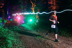 Běhej lesy spustí registrace. Termíny na rok 2020 si musí závodníci vyběhat