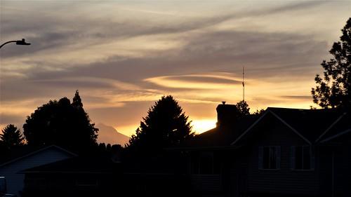out my kitchen window sunrise pdx portland oregon