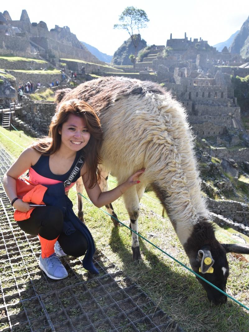 leftbanked Machu Picchu