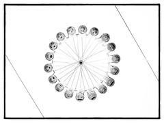 Bottle Wheel
