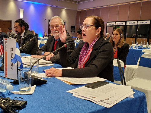 El Salvador to Host VIII Meeting of Ministers Responsible for Public Security of the Americas of the OAS in 2021