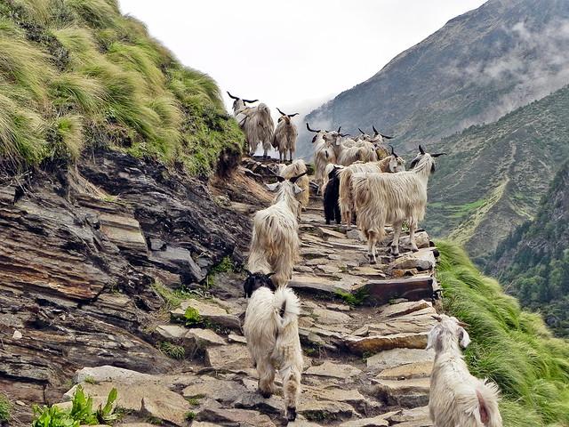 An uphill task...