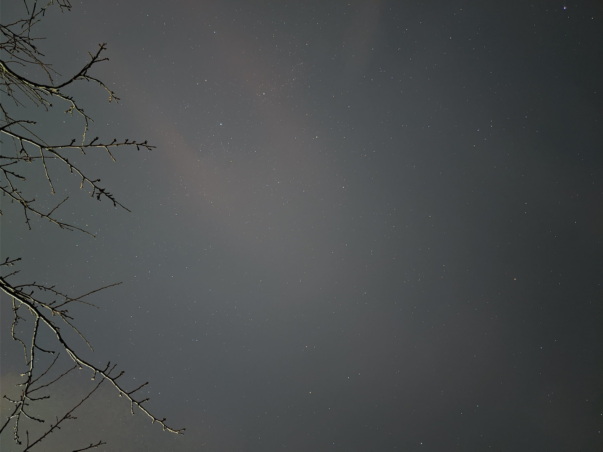 Pixel 4で撮影した星空