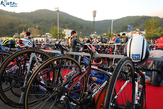 2019 Tongyeong ITU Triathlon World Cup Sponsored by 2XU(동호인부)