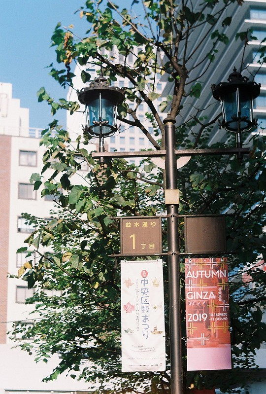 127flexaretⅥ+35mmアダプター+Kodak Color Plus200偽東京いい道しぶい道 並木通り終点
