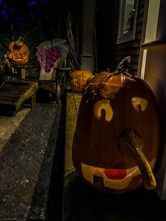 Halloween_pumpkins-3_MaxHDR_Contrast_Rotate (1 of 1)