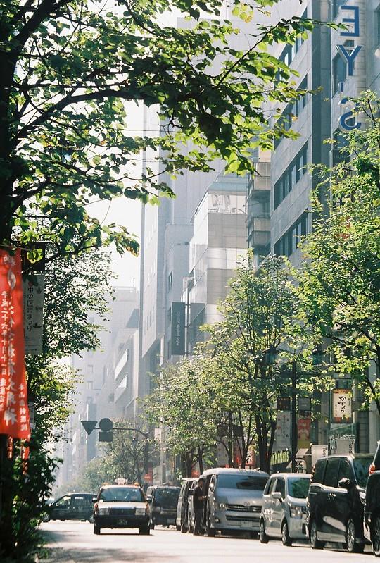 130flexaretⅥ+35mmアダプター+Kodak Color Plus200偽東京いい道しぶい道 並木通り終点