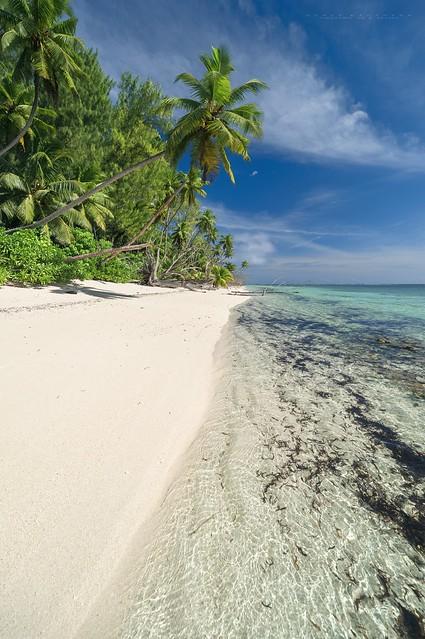 Alphonse Island - Alphonse Atoll - Seychelles 2019