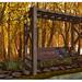 SAYO / Harvest Bench @ Fameshed