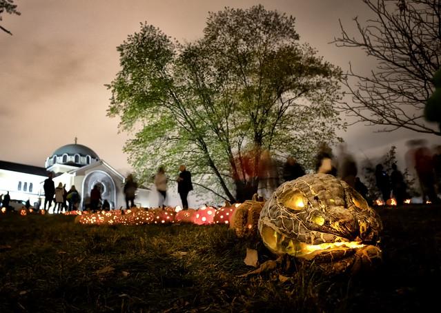 Pumpkin snake at Stoddard Ave. Pumpkin Glow at Grafton Hill, Dayton