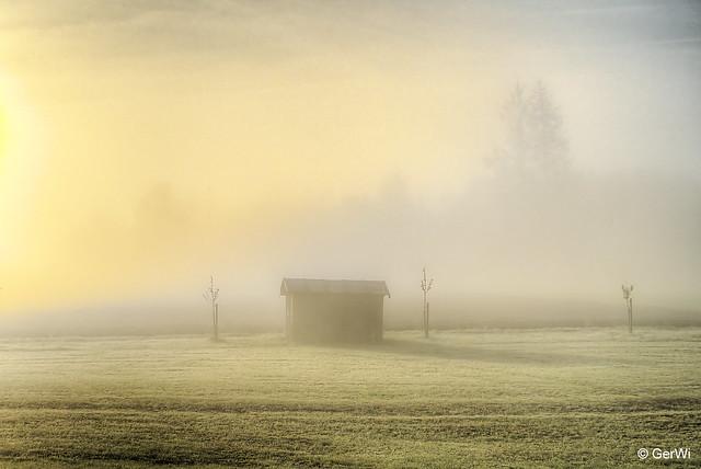 Sonnenaufgang im Nebel