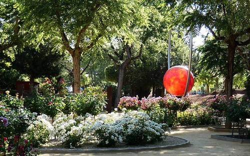 parque flores rosas manzanares