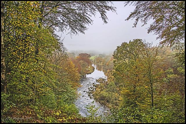 Autumn Landscape DSC_4112