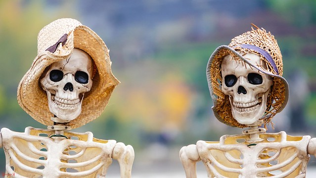 #Bones - 7640
