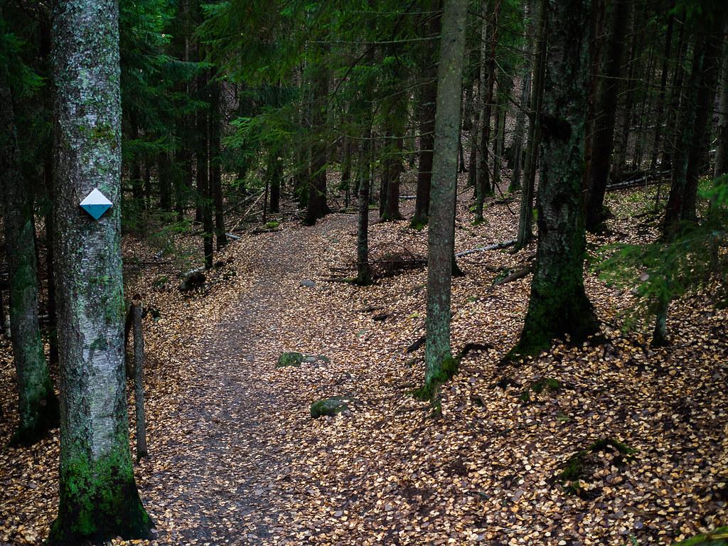 Sipoonkorven-kansallispuisto-Kalkinpolttajanpolku