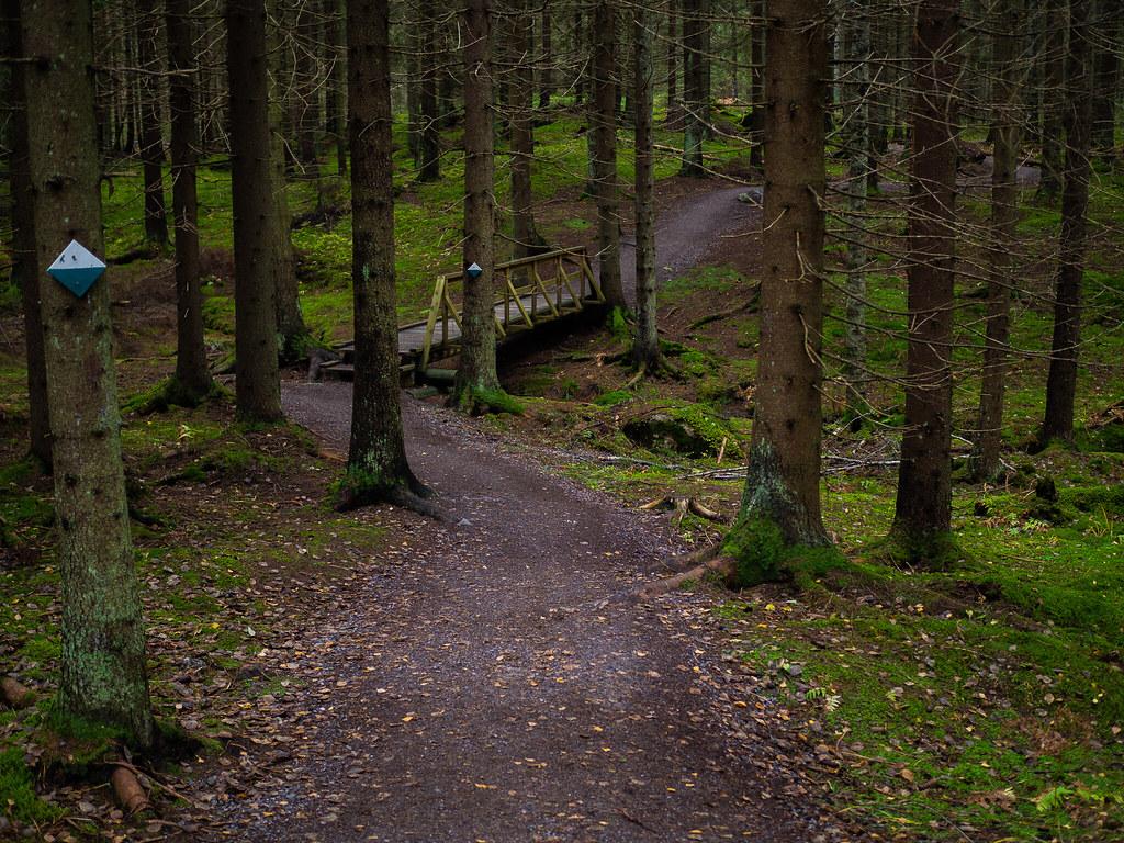 Sipoonkorven-kansallispuisto-Kalkinpolttajanpolku-3