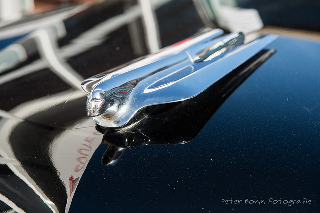 Cadillac Series 62 Eldorado Convertible - 1955