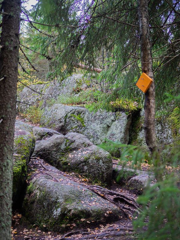 Sipoonkorven-kansallispuisto-Kalkinpolttajanpolku22
