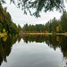 Urlaub im Schwarzwald - Tag 11 - Spaziergang um Titisee